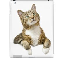 mysterious cat iPad Case/Skin