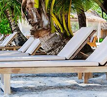 Sunbeds on exotic tropical palm beach by Stanciuc
