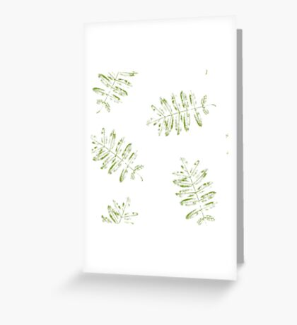 Leaves of mountain ash. Greeting Card