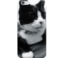 cat profile iPhone Case/Skin