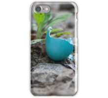 Cracked Robin's Egg iPhone Case/Skin