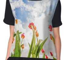 Reaching for the clouds Chiffon Top