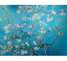 Vincent van Gogh,blossom,vintage,painting,beautiful,floral Photographic Print