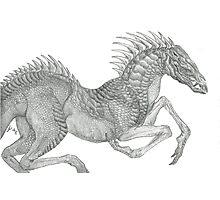 Dragon Horse Photographic Print