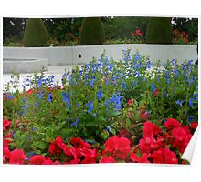 Flower Bed in front of Preston Temple Poster