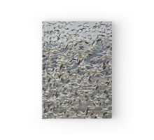 Snow Geese 3 Hardcover Journal