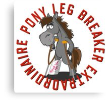 Pony Leg Breaker Extraordinaire 2 Canvas Print