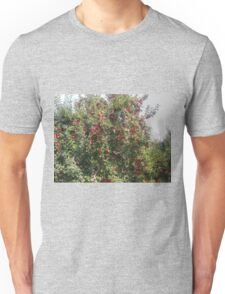 Bearing Apples Unisex T-Shirt