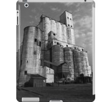Rice Towers of Katy Texas iPad Case/Skin