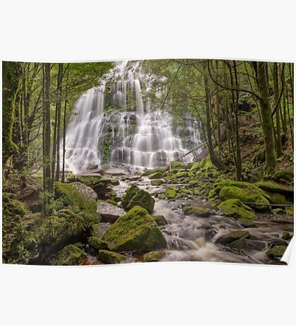 Nelson Falls - Wild Rivers National Park Poster