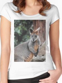 Red-necked wallaby Women's Fitted Scoop T-Shirt
