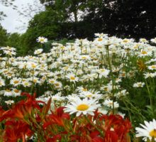 Lilies and Daisies - Preston Temple Grounds Sticker