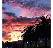 Sunset and palm trees  Photographic Print