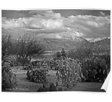 The Desert Floor ~ Snow Covered Mountains ~ Just Another Winter Day in the Desert Southwest Poster