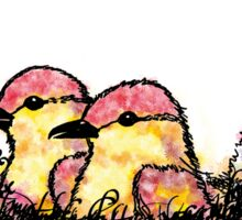 Two chicks in a nest Sticker