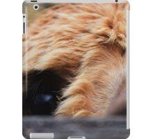 Llama fun iPad Case/Skin
