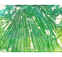 Broken Glass Watercolor Venus Mosaic Photographic Print
