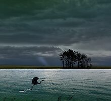 4262 by peter holme III