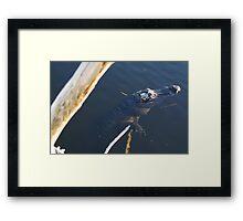 Hangin Framed Print