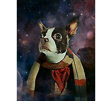 THE 4TH DOGTOR Photographic Print