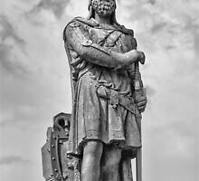 Robert the Bruce by M.S. Photography/Art