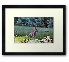 Just ignore me Framed Print