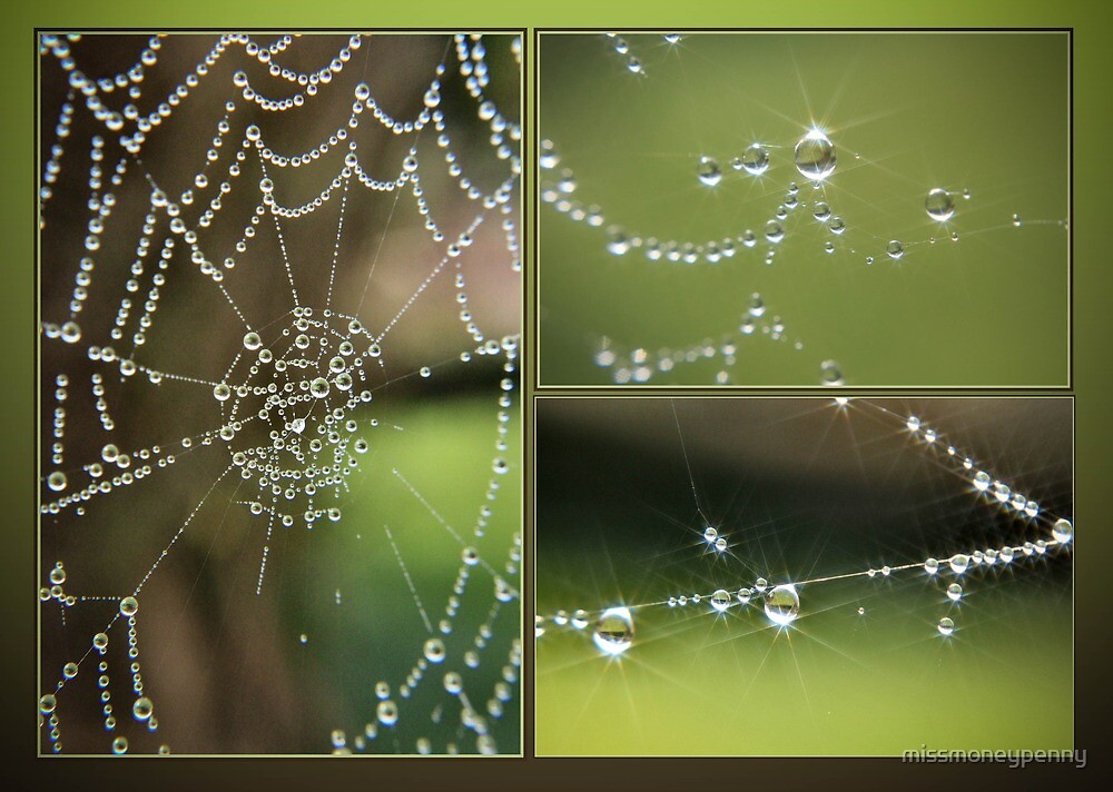 Nature's finest jewels by missmoneypenny