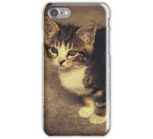 Cute Kitten iPhone Case/Skin