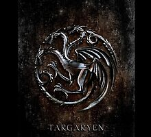 Targaryen Silver Chrome Dragon Wyvern Clan Flag Emblem by threesecond