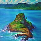 Chinaman's Hat - aerial by jyruff