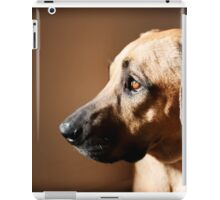 The Solace of Light iPad Case/Skin