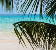 Exotic tropical beach with white sand and blue waters Sticker