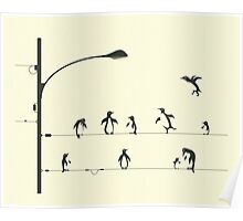 PENGUINS ON A WIRE Poster