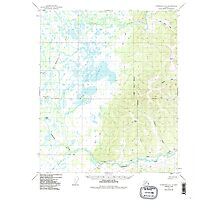 USGS TOPO Map Alaska AK Fairbanks D-4 355631 1949 63360 Photographic Print