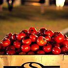Tomatoes by RaiZdbyDINGOES
