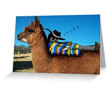 Sleeping Alpaca Gaucho Greeting Card