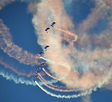 RAF Falcons 2 by lynn carter