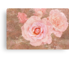 Candy roses Canvas Print