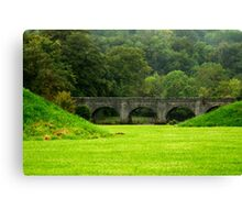 Green haven Canvas Print