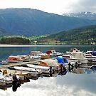 Ulvik - Hardangerfjord - Norway by Arie Koene