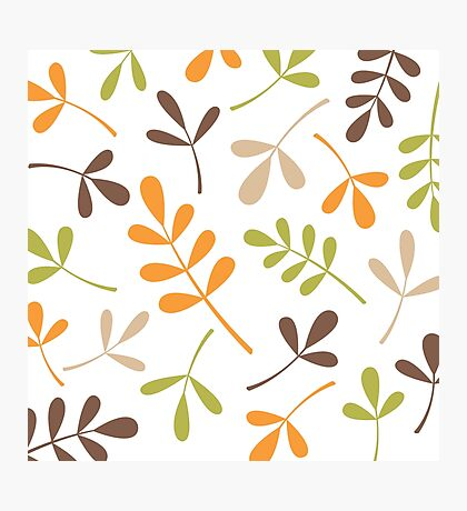 Assorted Leaf Silhouettes Retro Colors Photographic Print