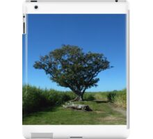 Torn between two cane fields iPad Case/Skin