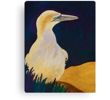 An Excellent Fisher Canvas Print
