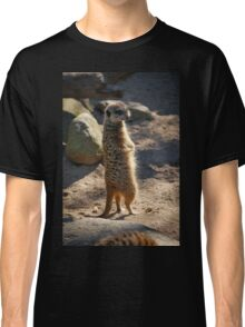 Meerkat on Lookout  Classic T-Shirt
