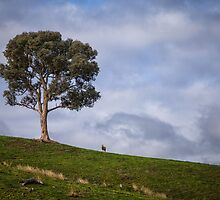 A Tree and Goat by yolanda
