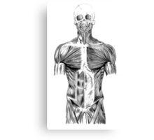 human body anatomy Canvas Print