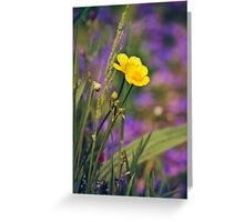 Buttercup Blues Greeting Card