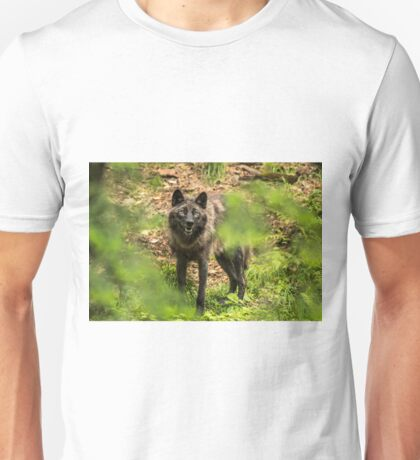 Black Wolf In Forest Unisex T-Shirt