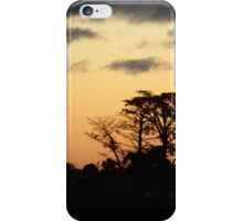Sunset at home iPhone Case/Skin