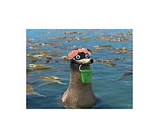 Gerald Finding Dory Flower Crown Photographic Print